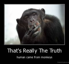 That's Really The Truth - human came from monkeys