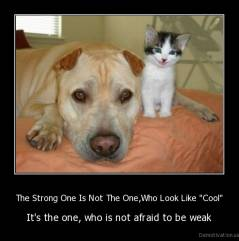 "The Strong One Is Not The One,Who Look Like ""Cool"" - It's the one, who is not afraid to be weak"