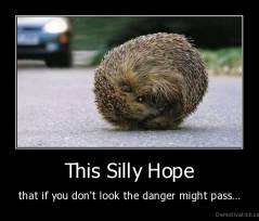 This Silly Hope - that if you don't look the danger might pass...