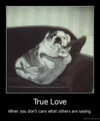 True Love - When you don't care what others are saying.