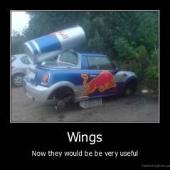 Wings - Now they would be be very useful