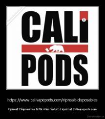https://www.calivapepods.com/ripnsalt-disposables - Ripnsalt Disposables & Nicotine Salts E-Liquid at Calivapepods.com