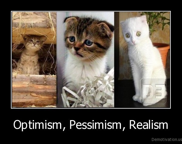 kitten,kittens,cats,optimism,pessimism,realism