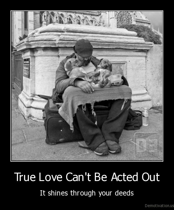 love,true, love,love, for, dog,anima, love,animal,homeless