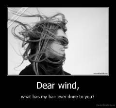 Dear wind, - what has my hair ever done to you?