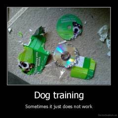 Dog training - Sometimes it just does not work