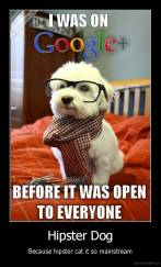 Hipster Dog - Because hipster cat it so mainstream