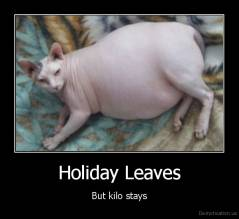Holiday Leaves - But kilo stays