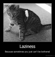 Laziness - Because sometimes you just can't be bothered