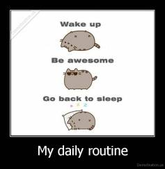 My daily routine -