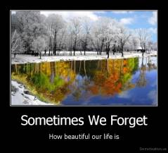 Sometimes We Forget - How beautiful our life is