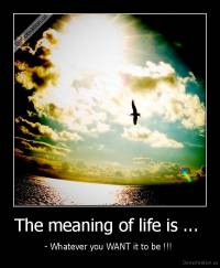 The meaning of life is ...  - - Whatever you WANT it to be !!!