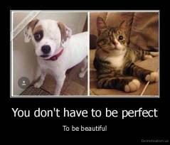 You don't have to be perfect - To be beautiful