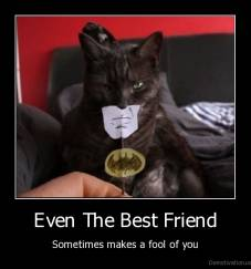 Even The Best Friend - Sometimes makes a fool of you
