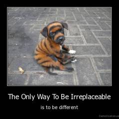 The Only Way To Be Irreplaceable - is to be different