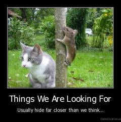 Things We Are Looking For - Usually hide far closer than we think...