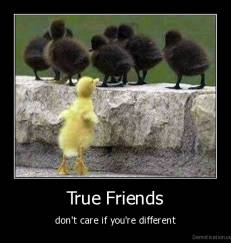 True Friends - don't care if you're different